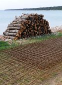 picture of reinforcing  - Reinforce steel and pieces of holm oak wood  at the waterfront of  the island Olib in the Adriatic sea in Croatia - JPG