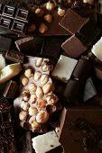 picture of hazelnut  - Set of chocolate with hazelnut - JPG
