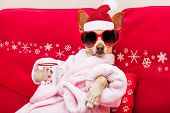 Dog Spa Wellness Christmas Holidays poster