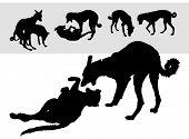 Coleção de cão de silhuetas vetor