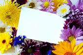 Blank Note-Card With Assorted Spring Flowers
