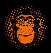 Chimpansee-in-bril