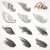 Vector set of wings