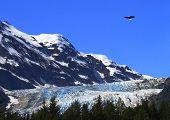 Eagle Over Davidson
