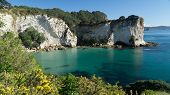Beautiful Coastline Of Coromandel Peninsula With Dramatic Cliffs And Turquoise Water, New Zealand poster