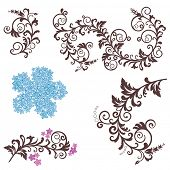 Beautiful floral design elements