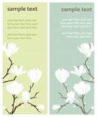 two vector cards with magnolia flowers