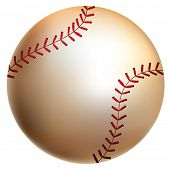 Isolated baseball ball. Vector illustration.