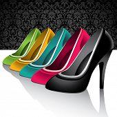 Set of elegant female shoes. Vector illustration.