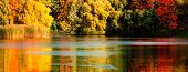 Beautiful Autumn Park With Colourful Leaves, Trees And Water. Autumn Landscape.park In Autumn. Fores poster