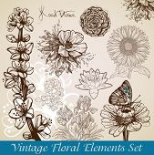 vintage floral backgrounds set - vector illustration