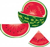 Ripe juicy water-melon
