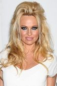 LOS ANGELES - JUL 27:  Pamela Anderson arrives at the ABC TCA Party Summer 2012 at Beverly Hilton Ho