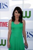 LOS ANGELES - JUL 29:  Robin Tunney arrives at the CBS, CW, and Showtime 2012 Summer TCA party at Be