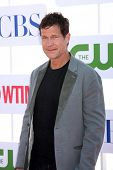 LOS ANGELES - JUL 29:  Dylan Walsh arrives at the CBS, CW, and Showtime 2012 Summer TCA party at Beverly Hilton Hotel Adjacent Parking Lot on July 29, 2012 in Beverly Hills, CA