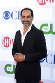 LOS ANGELES - JUL 29:  Navid Negahban arrives at the CBS, CW, and Showtime 2012 Summer TCA party at