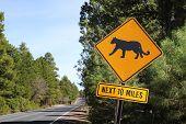 Puma Road Sign