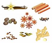 image of cinnamon sticks  - Vanilla pods - JPG