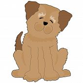 Lustige Hund