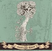 Magic grunge forest hand drawn by a vintage font - I