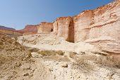 Mediterranean Desert