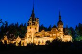 pic of neo  - Peles Castle is a Neo - JPG