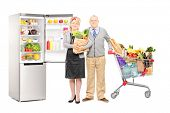 Full length portrait of a man and woman holding a paper bag and shopping cart full of groceries, with a fridge in the background