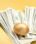 A golden egg on american dollars