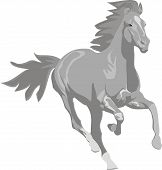 Prancing grey horse