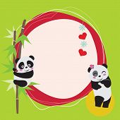 Amor de Panda