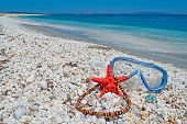 Necklace And Starfish