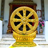 Gold Thammachak Symbol Of Buddhism