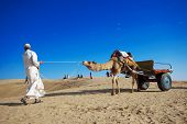 Camel Riding In The Desert