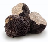 stock photo of truffle  - Black truffles on a white background  - JPG