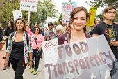 Protesters rallied in the streets against the Monsanto corporation