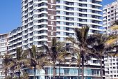 Closeup Of Palm Trees And Residential Complexes