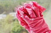Hand In Pink Glove Washing Window Glass