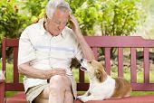Senior Man With His Dog