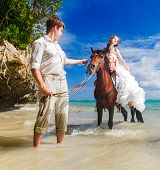 Happy Bride And Groom Walking With Horse On A Tropical Beach
