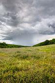 Rain on the green meadow, overcast sky