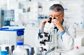 stock photo of scientific research  - senior male researcher carrying out scientific research in a lab using a microscope  - JPG