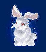 Magic White Rabbit
