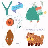 Very Cute Alphabet. Y Letter. Yorkshire Terrier,yam,yo-yo,yak.