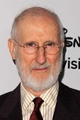 LOS ANGELES - MAY 19:  James Cromwell at the Disney Media Networks International Upfronts at Walt Di