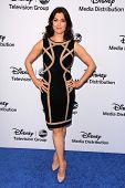 LOS ANGELES - MAY 19:  Bellamy Young at the Disney Media Networks International Upfronts at Walt Dis