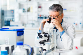 stock photo of chromatography  - senior male researcher carrying out scientific research in a lab using a microscope  - JPG