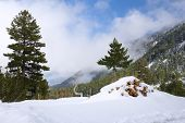 Winter In The Mountains Of Bulgaria
