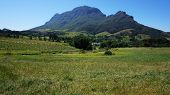 Mountains In Stellenbosch Wine Region, Outside Of Cape Town, South Africa