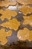 Unbaked Gingerbread Cookies