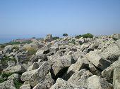 Greek temple in Selinunte